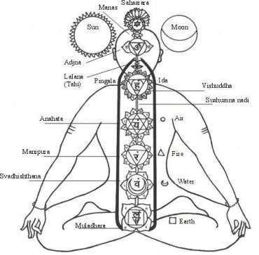 chakra chart as shown in tantric online classes